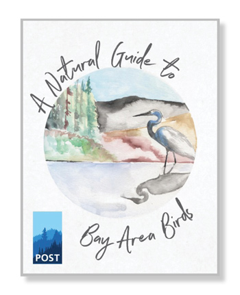 bird_buide_cover_gate_post