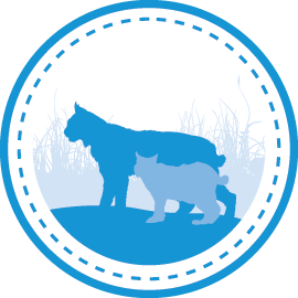Wildlife Linkages Program